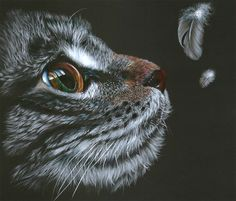 So much detail and expression in this kitty colored pencil drawing!