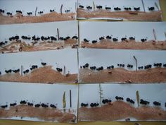 * Mieren zijn van zwarte crêpepapier propjes!