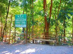 SUBIC- Pamulaklakin Forest Trail (30 minute hike)