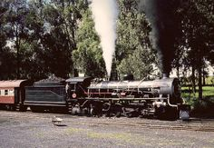 old railroad trains of south africa in photos | old STEAM LOCOMOTIVES in South Africa: Ashton Municipality - SAR Class ...
