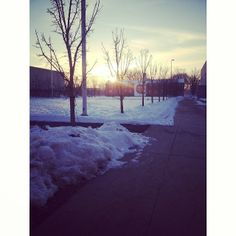 @xjen_explosionx  So blessed to be on this beautiful campus. #vfcc #vfccseasons