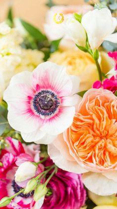 Beautiful Fruits, Wonderful Flowers, Love Flowers, My Flower, Fresh Flowers, Flower Power, Free Flower Wallpaper, Flower Meanings, Garden Inspiration