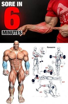 💪🏻The best forearm exercises ever - Trend Motivation Fitness 2020 Best Forearm Exercises, Forearm Workout, Biceps Workout, Forearm Training, Gym Workout Tips, Weight Training Workouts, Workout Videos, Fun Workouts, Good Bicep Workouts