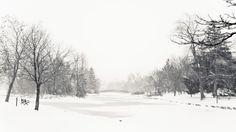 Winter in Victoria Park