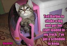 Tell Barbie  http://cheezburger.com/9126029056