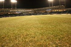 The natural grass surface at PNC Field has been maintained throughout the rebuilding process, and is in perfect shape for opening night.
