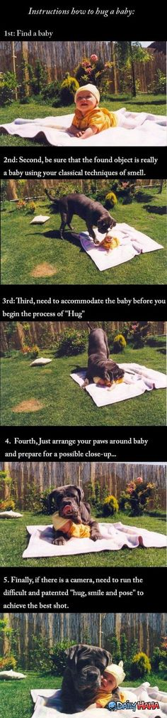 Funny Baby Pictures with Captions | ... Funny pictures of animals – How To Hug a Baby- humor cute pictures