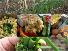 Mennonite Girls Can Cook: Quick Potato Salad