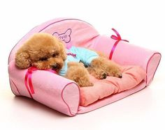 Luxury Pink Princess Dog Sofa Beds For Chihuahua 60*36*30cm