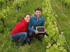 Visitez votre vignoble et participez au travail du vigneron - Journée Découverte de la vigne #GourmetOdyssey