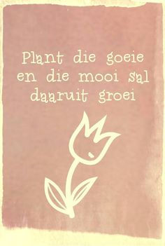 Plant die goeie & die mooi sal daaruit groei. __Afrikaanse Inspirerende Gedagtes & Wyshede (Facebook) Sign Quotes, Cute Quotes, Bible Quotes, Words Quotes, Wise Words, Motivational Quotes, Afrikaanse Quotes, Inspirational Words Of Wisdom, Word Art