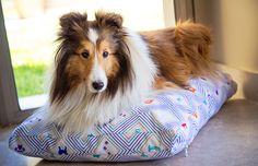 PERRONAUTAS Cuchas, almohadones y objetos de decoración para tu perro. http://charliechoices.com/perronautas/