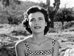 'Λατέρνα, Φτώχεια Και Φιλότιμο' (1955)