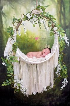 New Ideas For New Born Baby Photography : Newborns Photography PropsBaby Dream Catcher Great for taking photos of newborns babies supports up to 11 pounds.