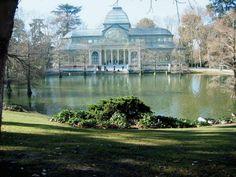 El Palacio de Cristal del Retiro es una estructura de metal y cristal situado en los Parque del Retiro de Madrid