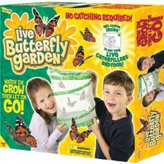 Insect Lore Live Butterfly Garden #Kids #Kid #Toys #Christmas #Holiday #Holidays #Wish #Wishlist #Gift #Gifts #Present #Presents #Children #Child #Learning #Education #Toy $11