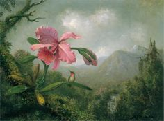 """""""Orchid and Hummingbird near a Mountain Waterfall"""" by Martin Johnson Heade, Completion Date: 1902."""