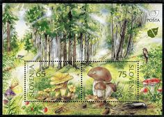 149 - SLOVENIA 1996 - The Flora of Slovenia - Fungi - Muschrooms - MNH Set
