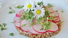 #close up #decorate #dish #edible #flowers #food #herb #ingredient #leaves #lunch #meal #nutrition #radishes #raw #red #vegetable