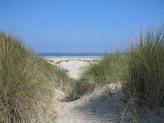 Ouddorp strand behang