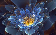 flower_fractal_petals_81470_1920x1200.jpg (1920×1200)
