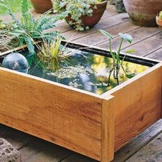 How To Build A Deck Top Pond Your Kids Will Love - Unique DIY Ideas