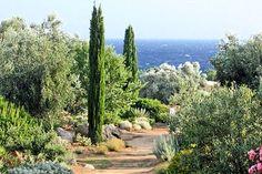Parc de Saleccia Corse  Jardin méditerranéen   Terre et mer