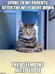 Take A Seat Cat Meme | SPOKE TO MY PARENTS AFTER THE WI-FI WENT DOWN THEY SEEM…