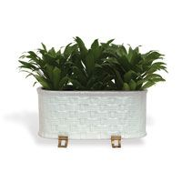 Sanibel Cream Oval Planter