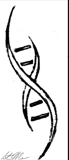 DNA Helix. Something like this, but a little more completed. I'm a bio major, and about to study genetics