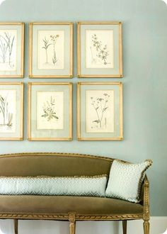 Elegant Foyer With Blue Gray Walls Olive Green French Settee Silk Lumbar Pillow And Botanical Art Prints Framed In Gold Leaf Frames
