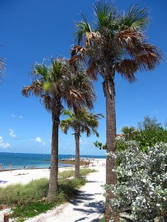 Key West: Fort Zachary Taylor Historic State Park | Flickr - Photo Sharing! Photo by Kwong Yee Cheng