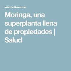 Moringa, una superplanta llena de propiedades | Salud