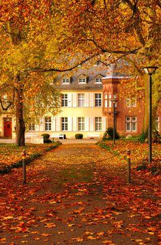 "photos-worth: "" Autumn walks, by Maggie_Photography "" "" "" Autumn Walks, Autumn Scenes, Autumn Cozy, Autumn Rain, Lovely Smile, Autumn Aesthetic, All Nature, Fall Season, Autumn Leaves"