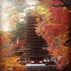 Tanzan Shrine, Sakurai, Nara, Japan