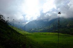 Valle de Corcora, Colombia.