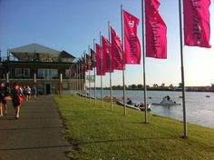 venue Dragon Boat, World Championship, Hungary, Travel Usa, Canada, Country, Pictures, Photos