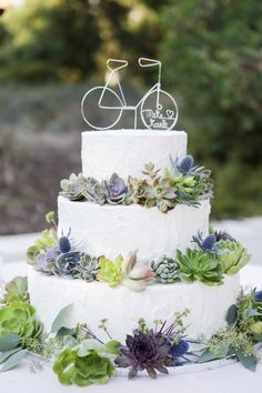 Bicycle cake topper on a succulent cake! Cute!