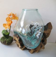 "12"" MOLTEN clear GLASS VASE on wood root. Handblown, reclaimed glass, gorgeous!  #38"