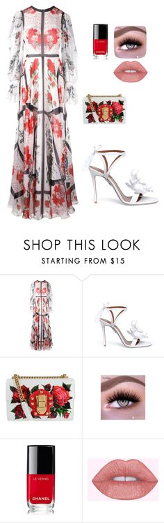 """""""Untitled #875"""" by einatv ❤ liked on Polyvore featuring Alexander McQueen, Aquazzura, Dolce&Gabbana and Chanel"""