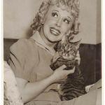 13 Adorable Vintage Cat Photos   Lovelyish