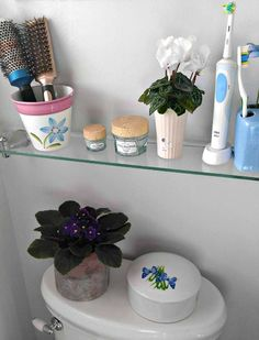 AFrican violets like humidity. The bathroom is a good spot for them.