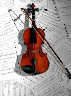 What became of the violin Lily echanted Sam with? Read The Lightness of Dust by M.L. Weaver...you may find out.  #violin #book    Violín / Violin / Violon / Violino / Violine