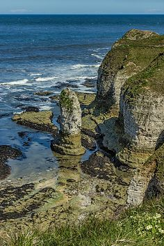 Flamborough Head, Yorkshire coast - visit on a tour of the Wolds with www.realyorkshiretours.co.uk