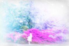 the faeries of the flowers by alice solantania saga #alicesaga
