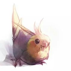 New cute bird pictures parrots ideas Cute Animal Drawings, Animal Sketches, Bird Drawings, Kawaii Drawings, Cute Drawings, Art Sketches, Funny Birds, Cute Birds, Pretty Art