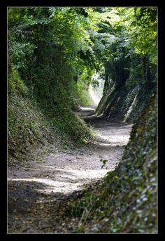 A 'holle weg' at Limburg