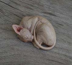 Sphynx Cats Resin Sculpture Figurines by Deborah McDermott