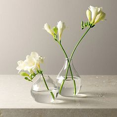 Glass Vases Set of 2   The White Company  http://www.thewhitecompany.com/home/home-accessories/decorative-accessories/glass-bud-vases--set-of-2/