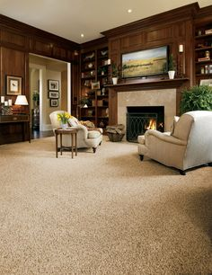 1000 Images About Stainmaster 169 Carpet On Pinterest